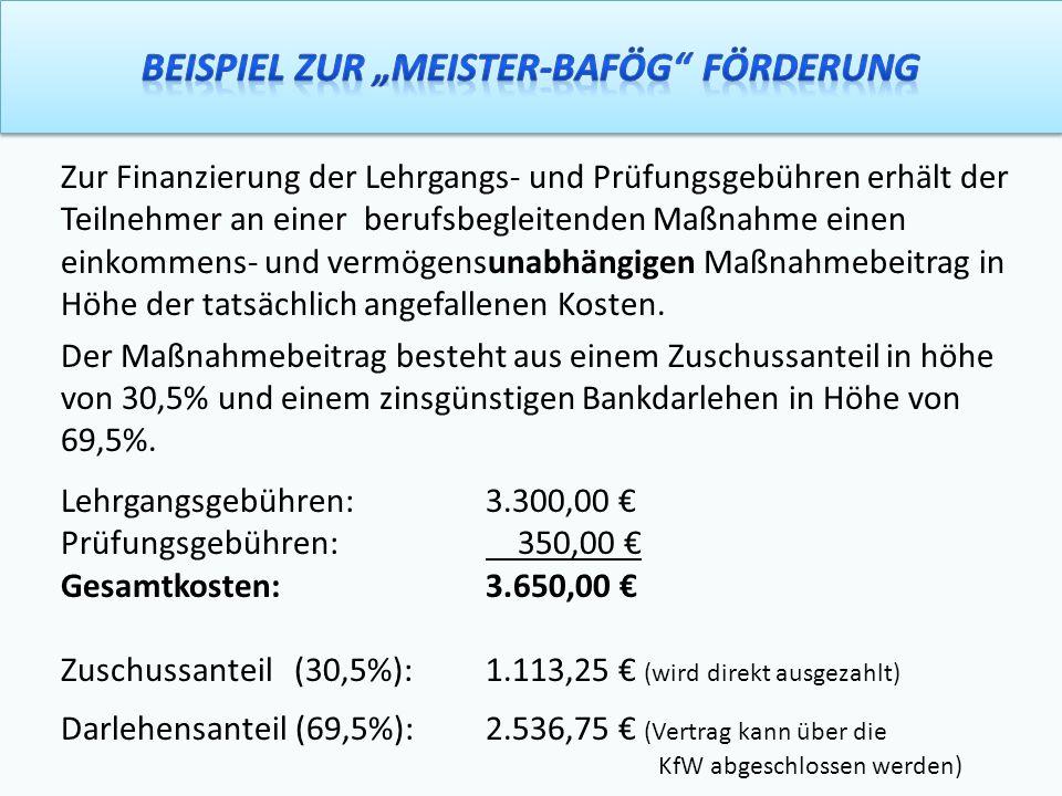 """Beispiel zur """"Meister-BAföG Förderung"""