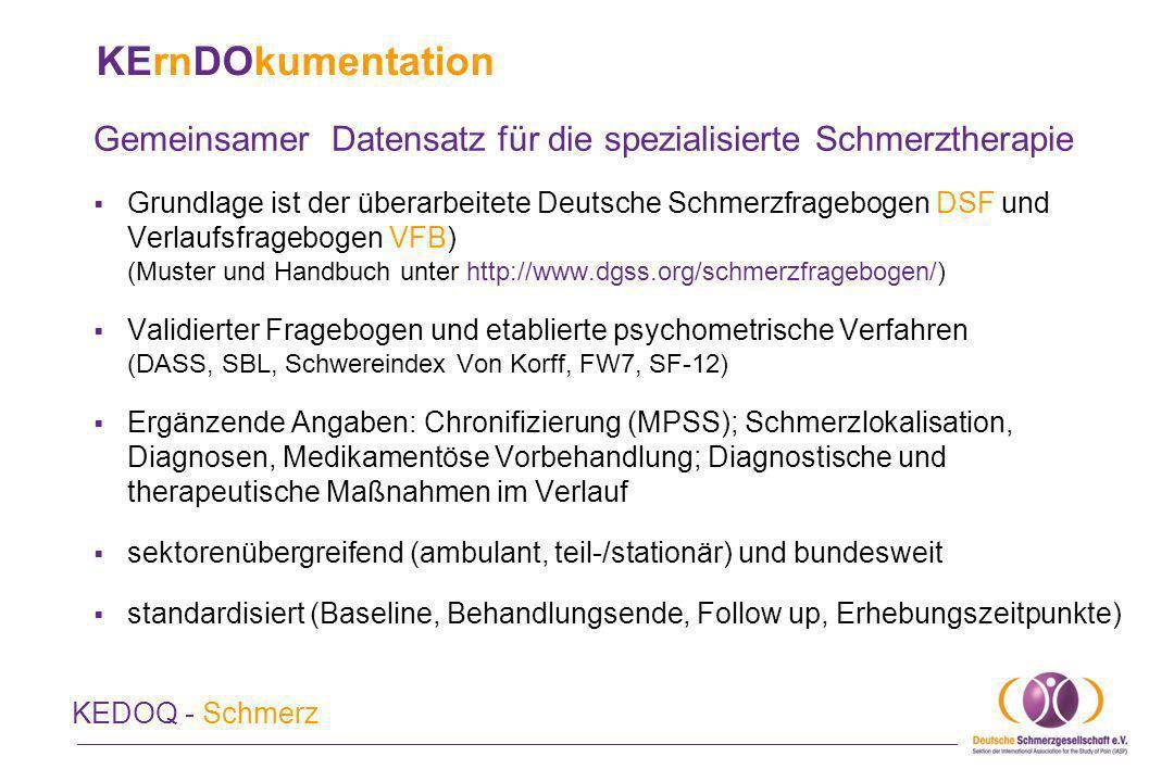 KErnDOkumentation Gemeinsamer Datensatz für die spezialisierte Schmerztherapie.
