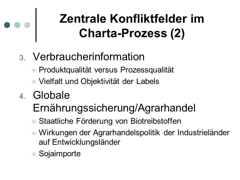 Zentrale Konfliktfelder im Charta-Prozess (2)