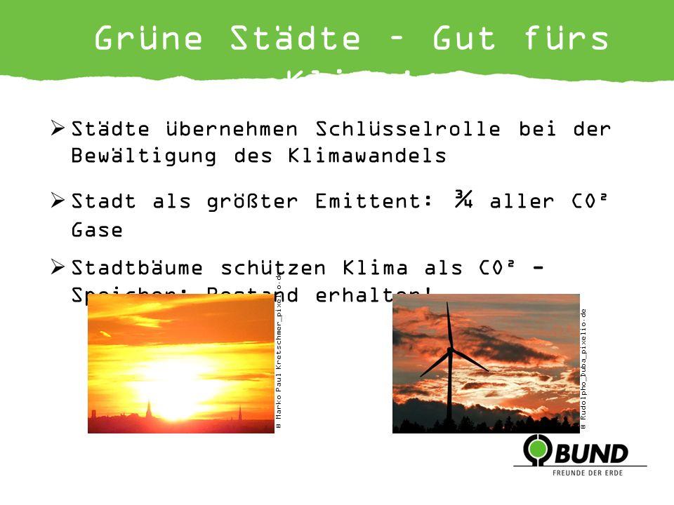 Grüne Städte – Gut fürs Klima!