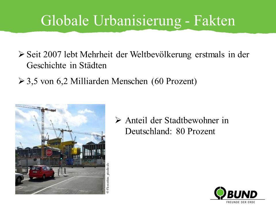 Globale Urbanisierung - Fakten