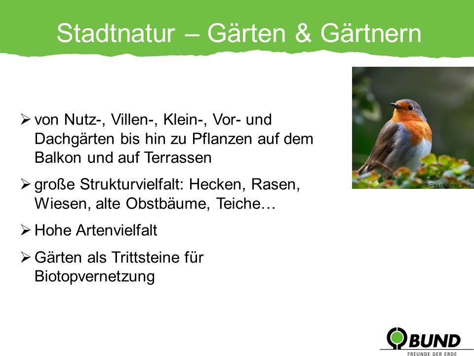 Stadtnatur – Gärten & Gärtnern