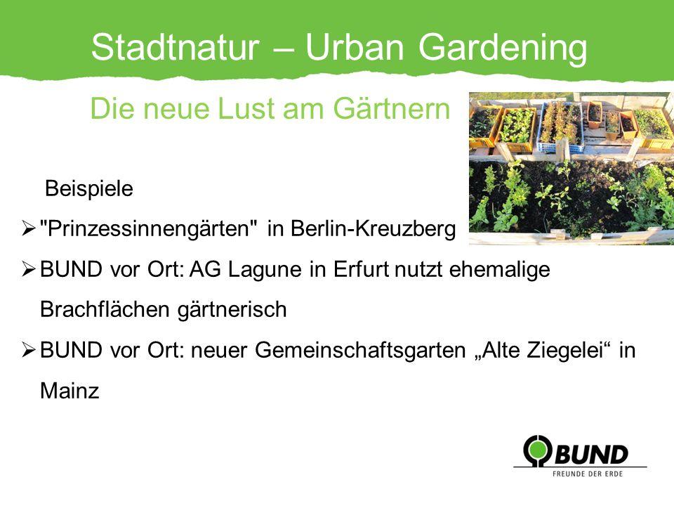 Stadtnatur – Urban Gardening