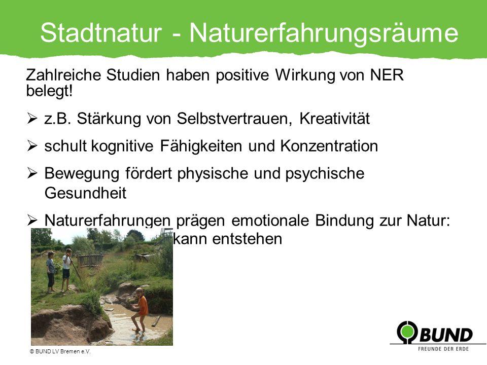Stadtnatur - Naturerfahrungsräume