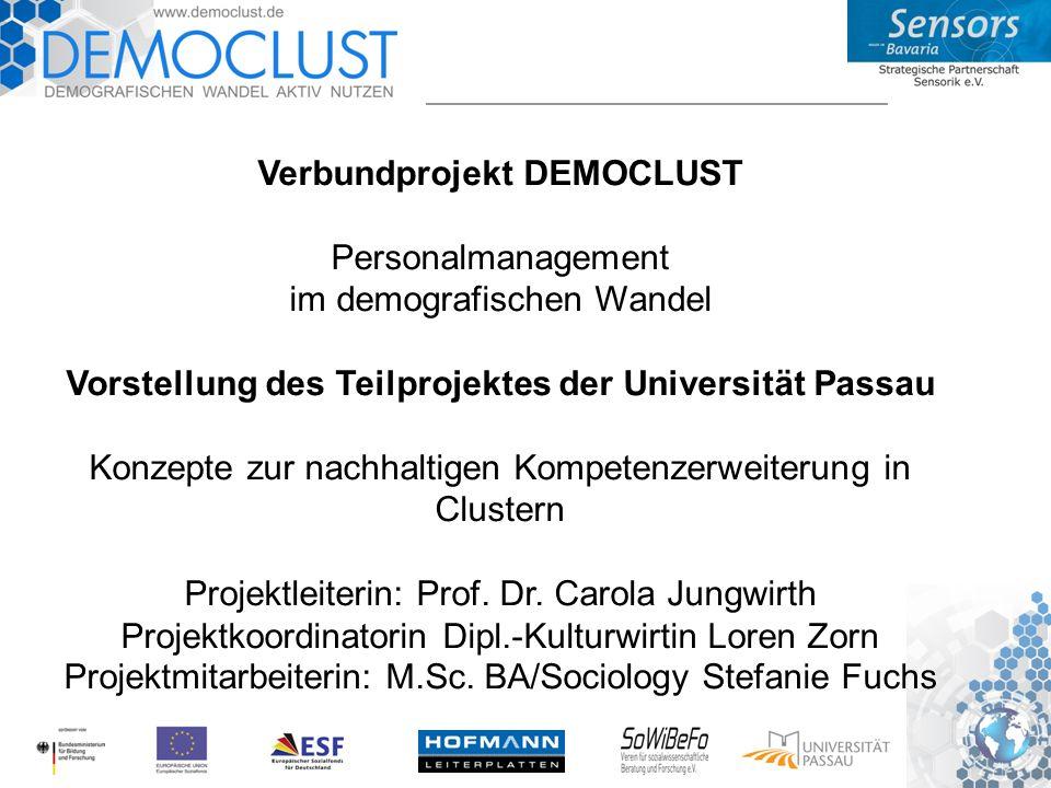 Verbundprojekt DEMOCLUST Personalmanagement im demografischen Wandel Vorstellung des Teilprojektes der Universität Passau Konzepte zur nachhaltigen Kompetenzerweiterung in Clustern Projektleiterin: Prof.