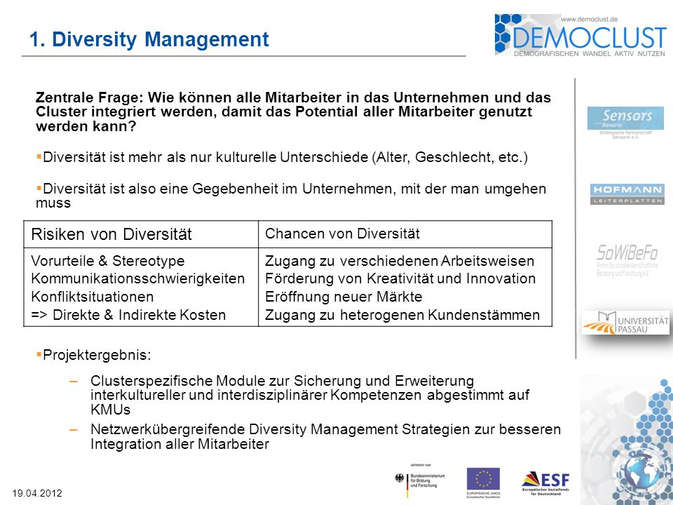1. Diversity Management Risiken von Diversität