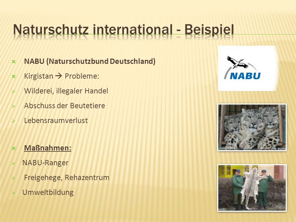 Naturschutz international - Beispiel