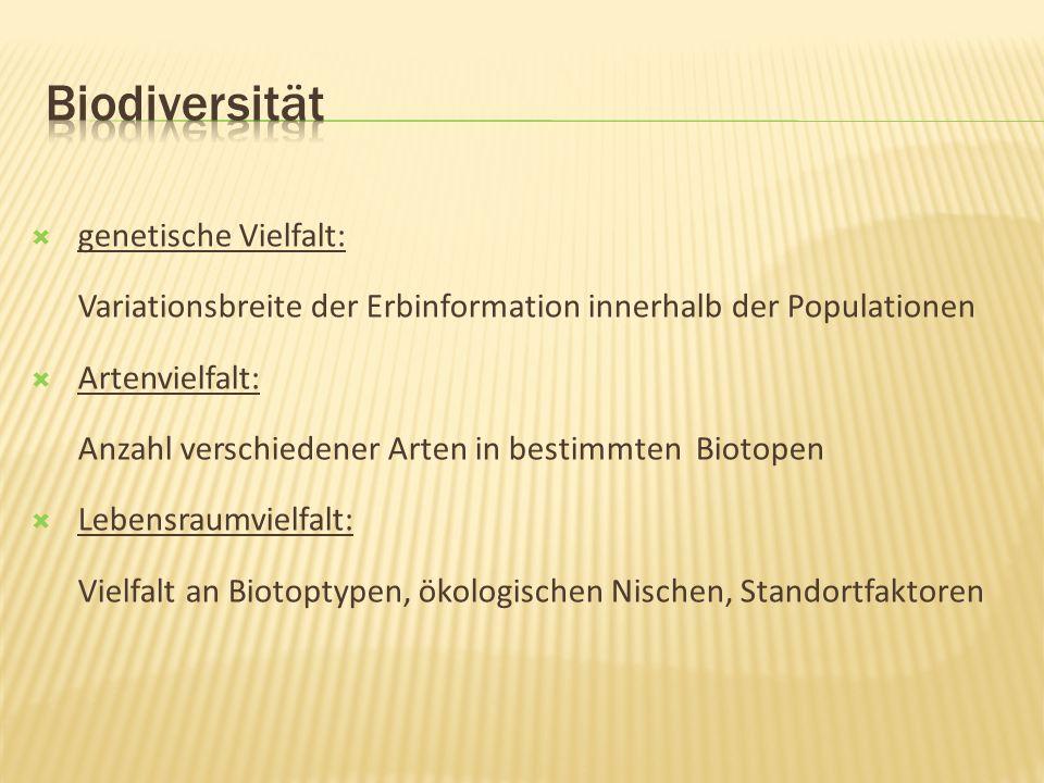 Biodiversität genetische Vielfalt: