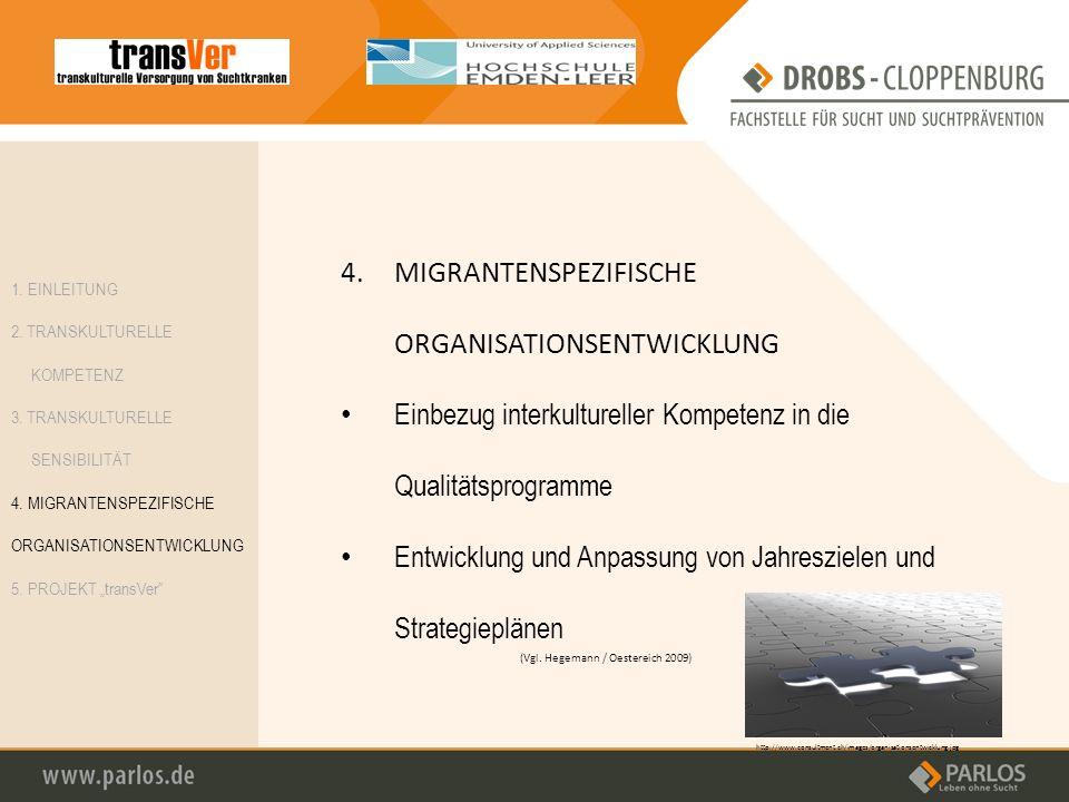 4. MIGRANTENSPEZIFISCHE ORGANISATIONSENTWICKLUNG