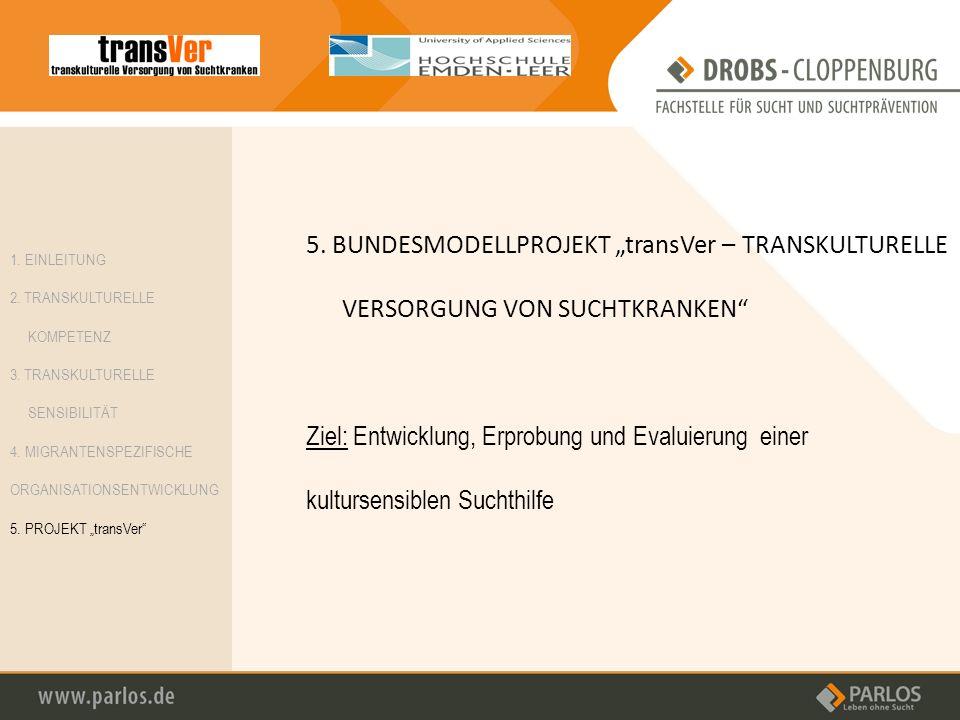 "5. BUNDESMODELLPROJEKT ""transVer – TRANSKULTURELLE VERSORGUNG VON SUCHTKRANKEN"