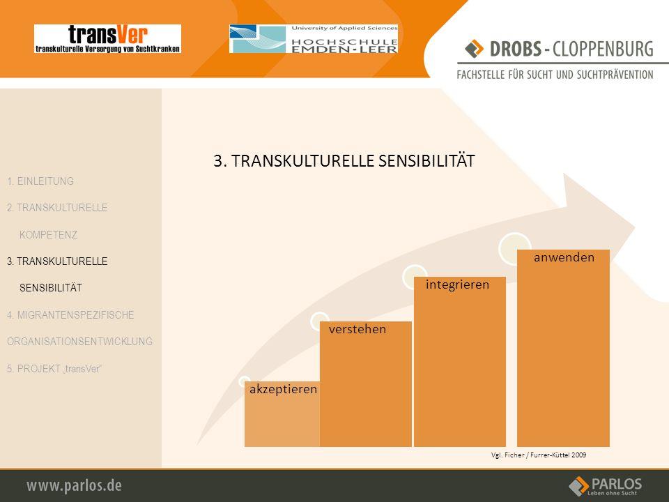 3. TRANSKULTURELLE SENSIBILITÄT