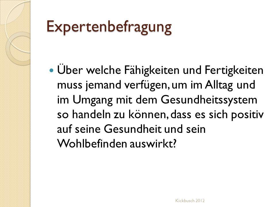 Expertenbefragung