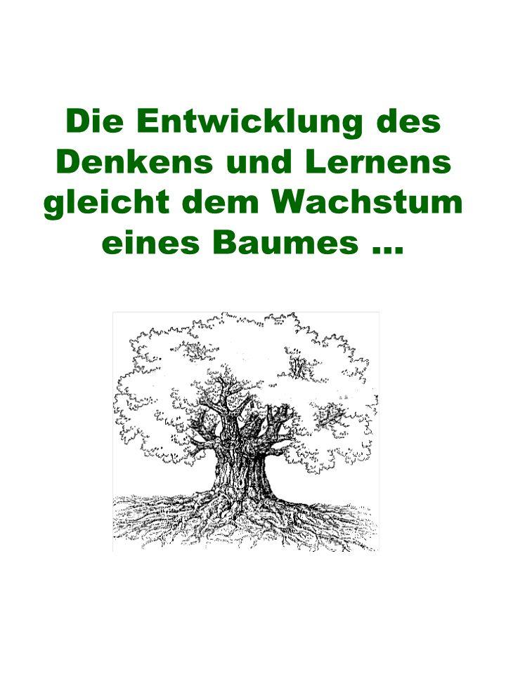 Die Entwicklung des Denkens und Lernens gleicht dem Wachstum eines Baumes ...