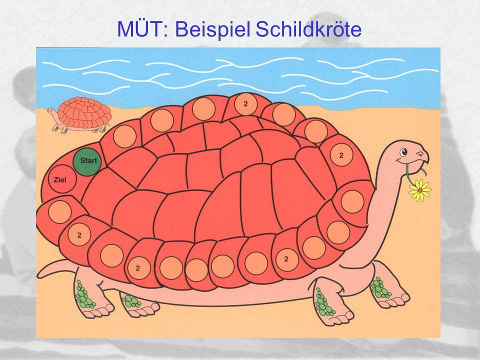 MÜT: Beispiel Schildkröte