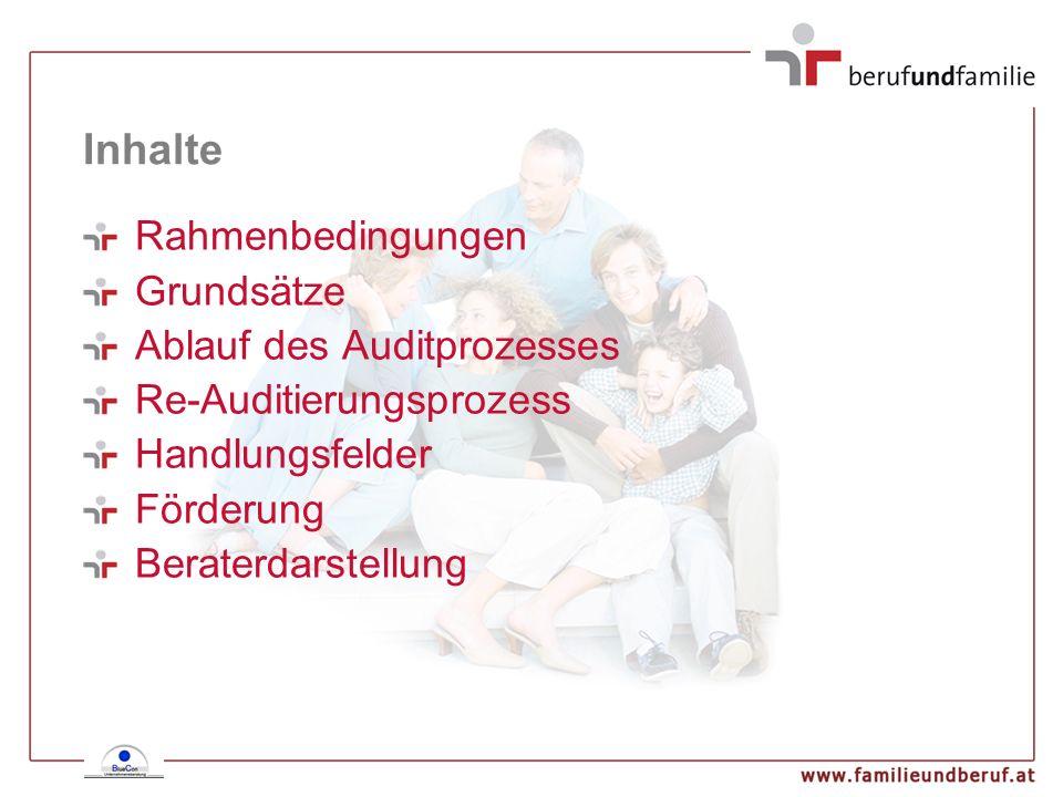 Inhalte Rahmenbedingungen Grundsätze Ablauf des Auditprozesses