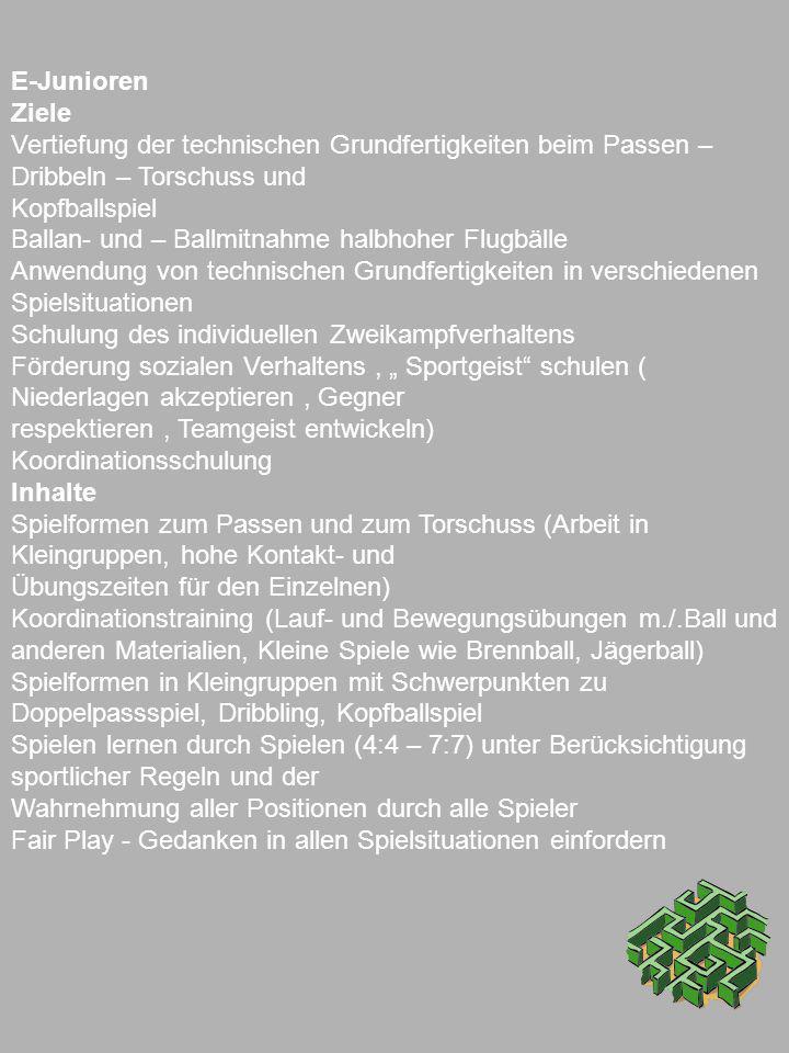 E-Junioren Ziele. Vertiefung der technischen Grundfertigkeiten beim Passen – Dribbeln – Torschuss und.