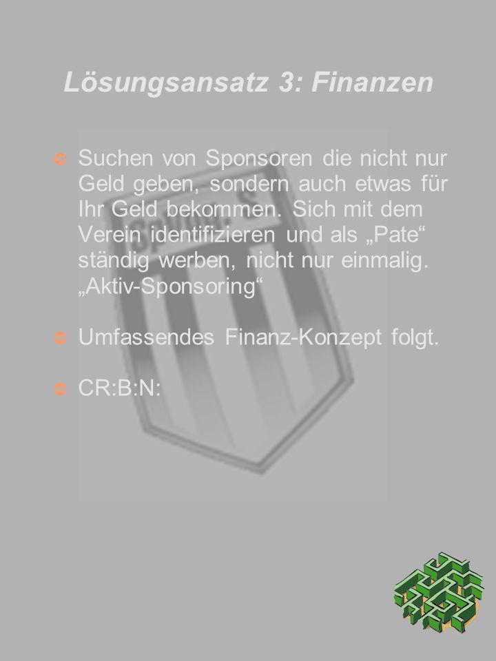 Lösungsansatz 3: Finanzen