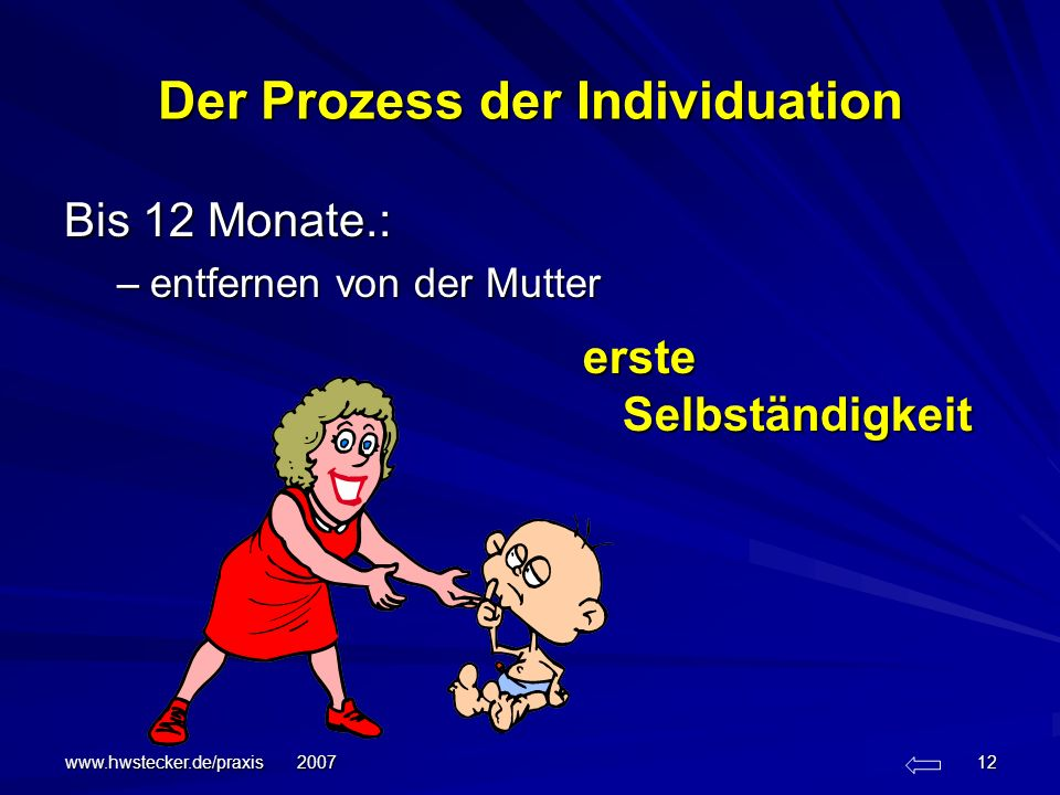 Der Prozess der Individuation