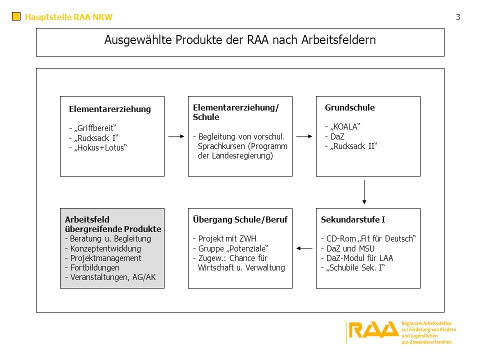 Ausgewählte Produkte der RAA nach Arbeitsfeldern