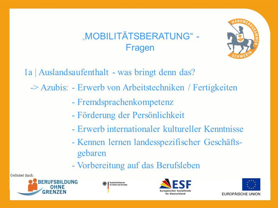 """MOBILITÄTSBERATUNG - Fragen"
