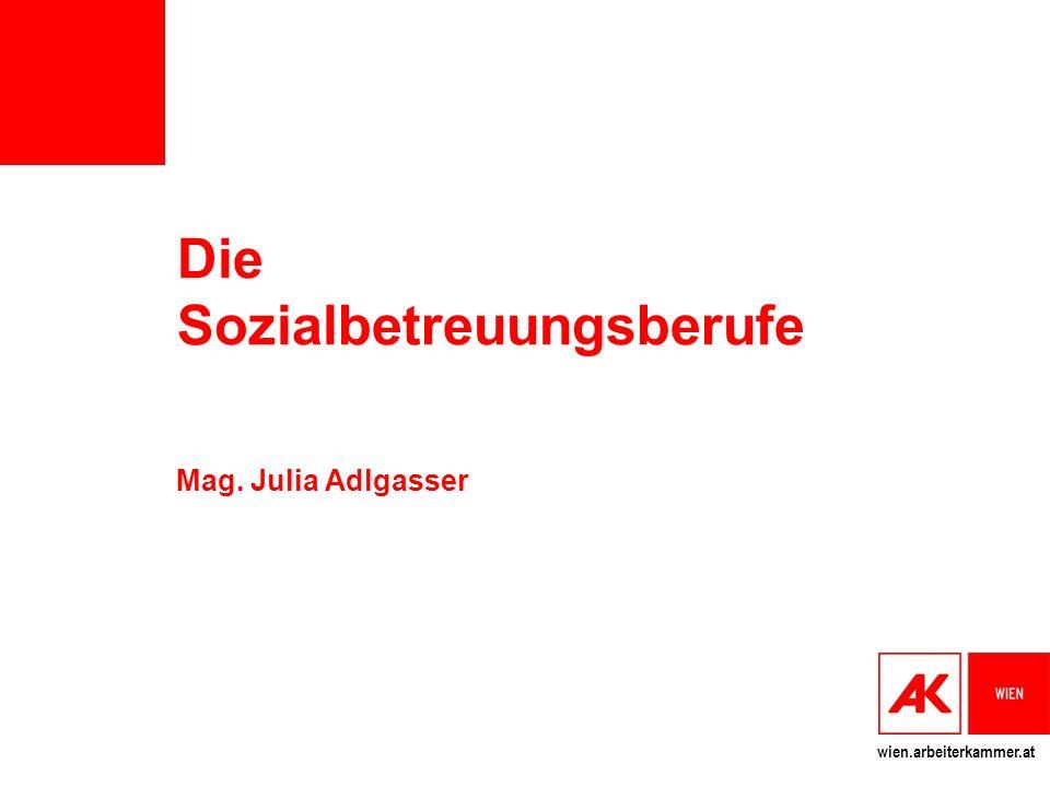 Die Sozialbetreuungsberufe