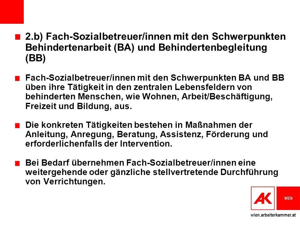 2.b) Fach-Sozialbetreuer/innen mit den Schwerpunkten Behindertenarbeit (BA) und Behindertenbegleitung (BB)