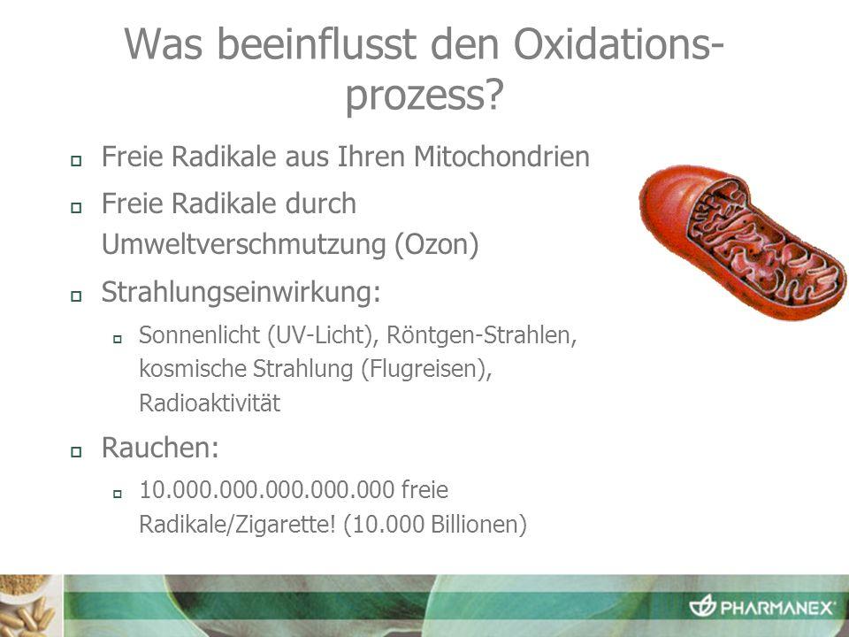 Was beeinflusst den Oxidations- prozess