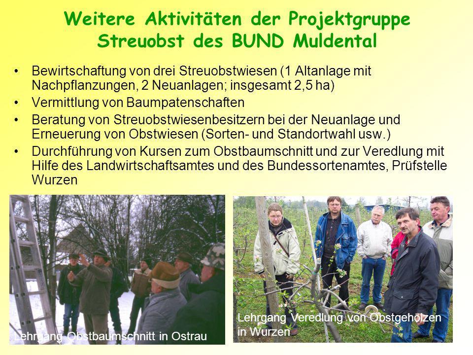 Weitere Aktivitäten der Projektgruppe Streuobst des BUND Muldental