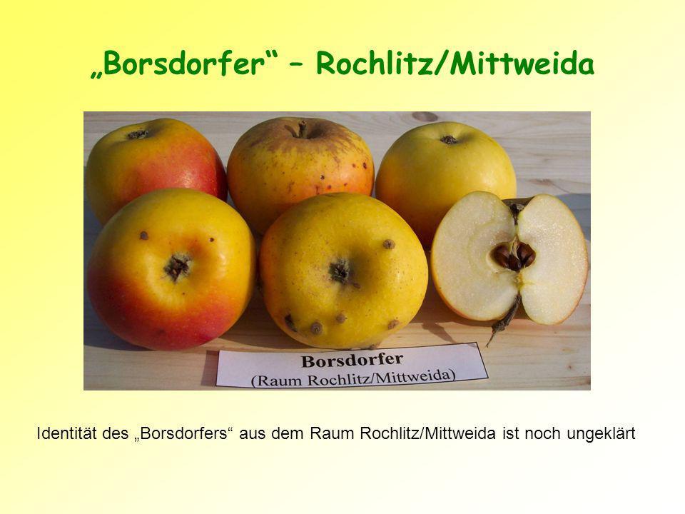"""""""Borsdorfer – Rochlitz/Mittweida"""
