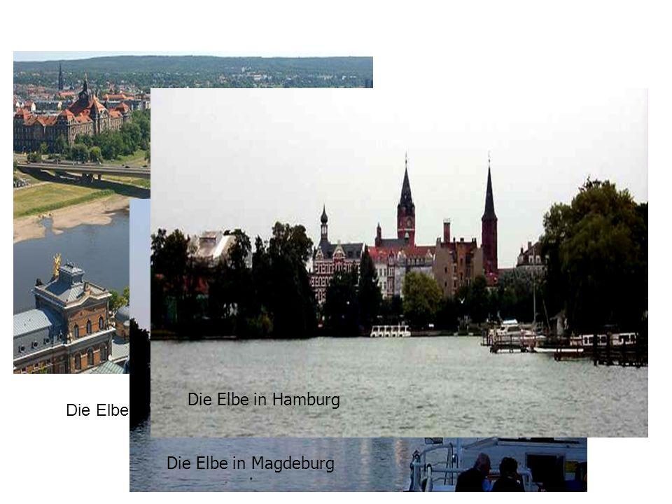 Die Elbe in Hamburg Die Elbe in Dresden Die Elbe in Magdeburg