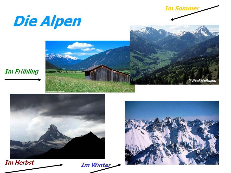 Im Sommer Die Alpen Im Frühling Im Herbst Im Winter
