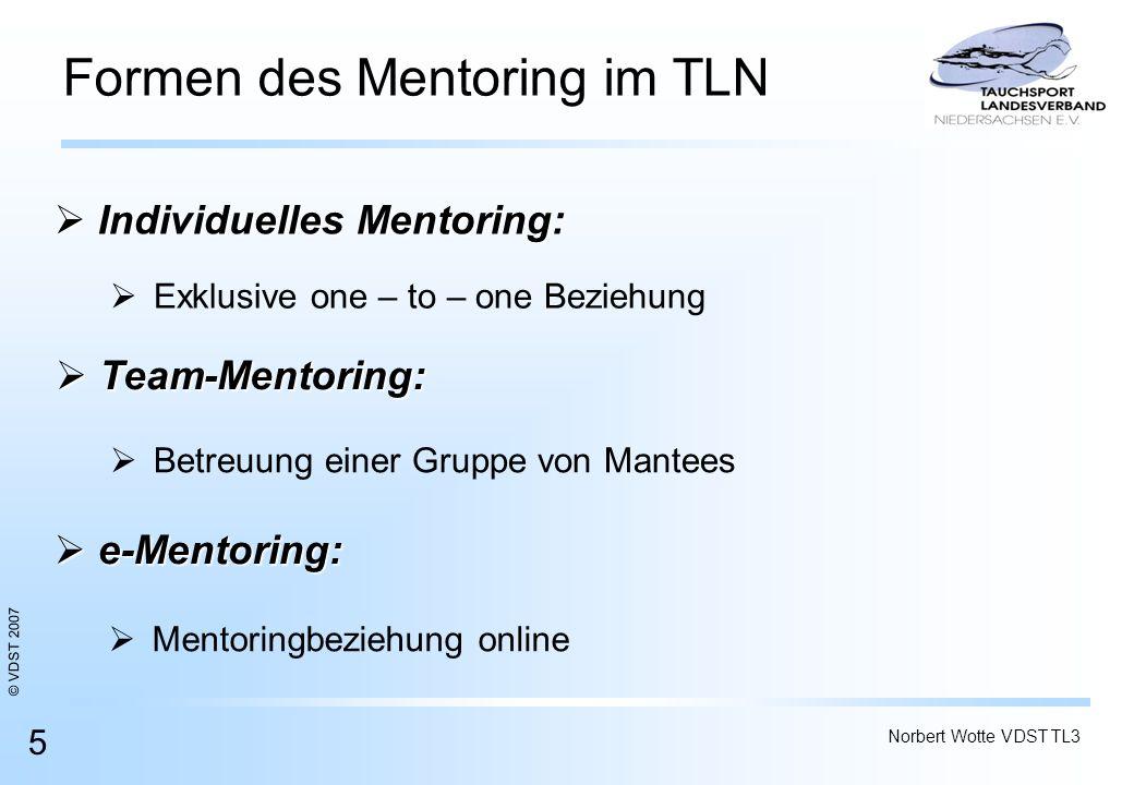 Formen des Mentoring im TLN