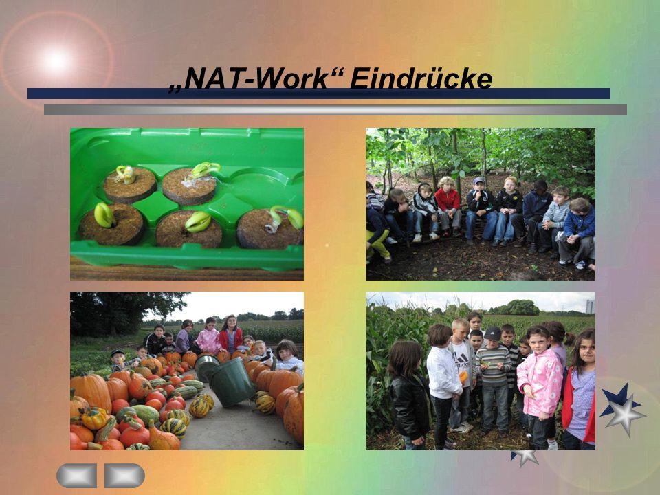 """""""NAT-Work Eindrücke"""