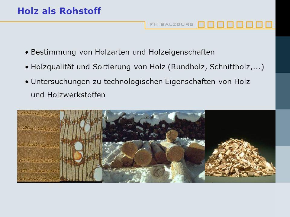 Holz als Rohstoff Bestimmung von Holzarten und Holzeigenschaften