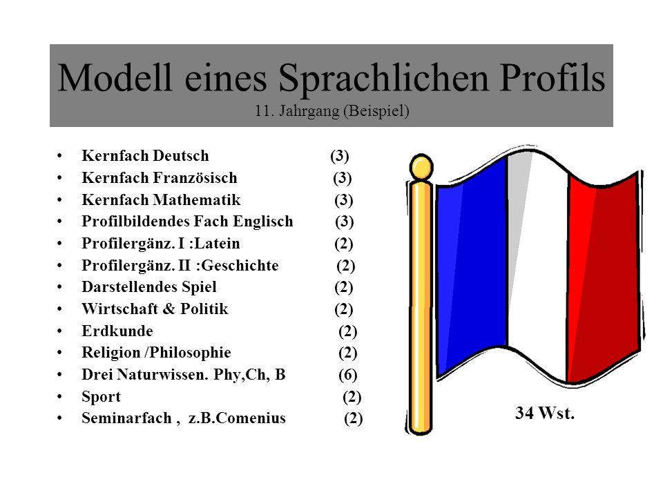 Modell eines Sprachlichen Profils 11. Jahrgang (Beispiel)