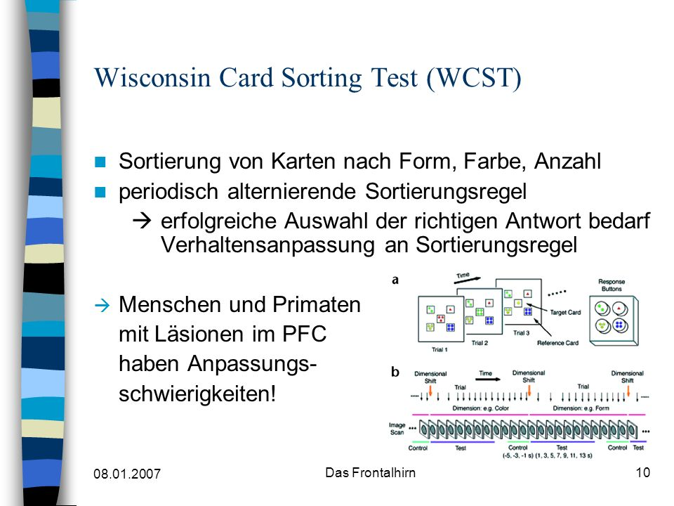 Wisconsin Card Sorting Test (WCST)