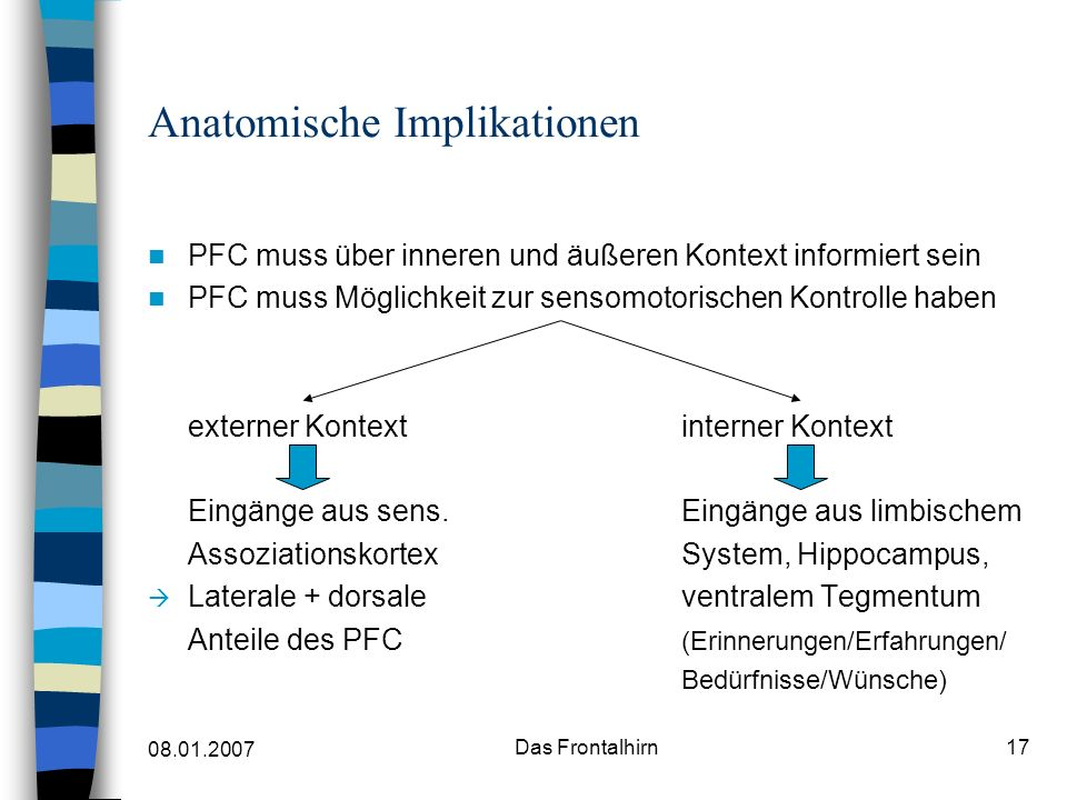 Anatomische Implikationen
