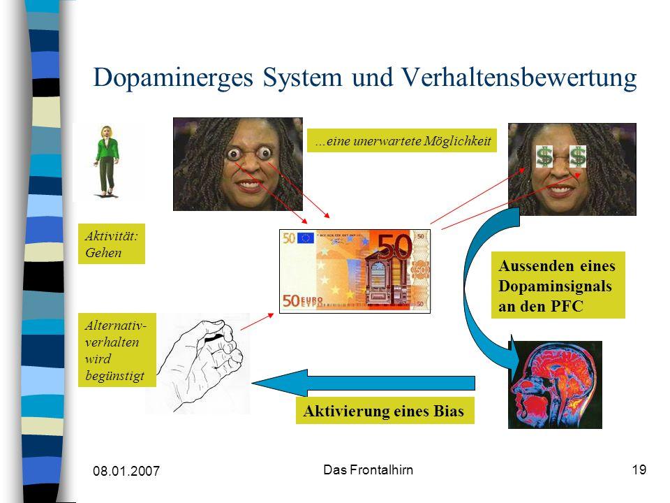 Dopaminerges System und Verhaltensbewertung