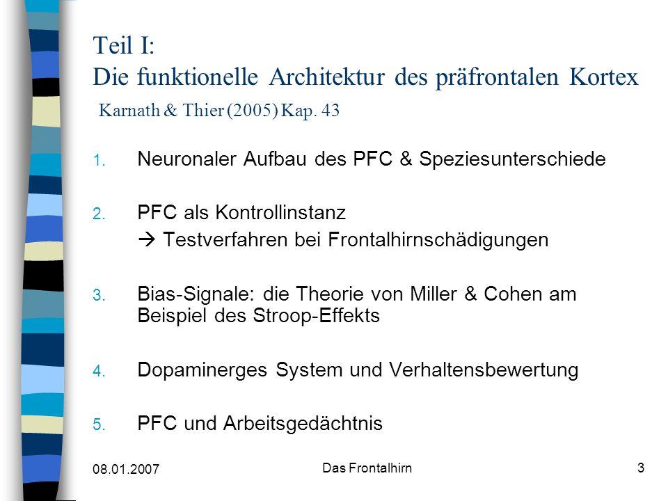 Teil I: Die funktionelle Architektur des präfrontalen Kortex Karnath & Thier (2005) Kap. 43