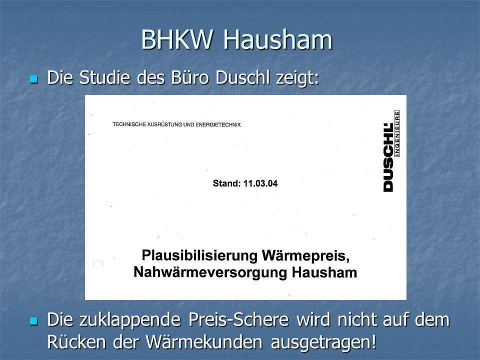 BHKW Hausham Die Studie des Büro Duschl zeigt: