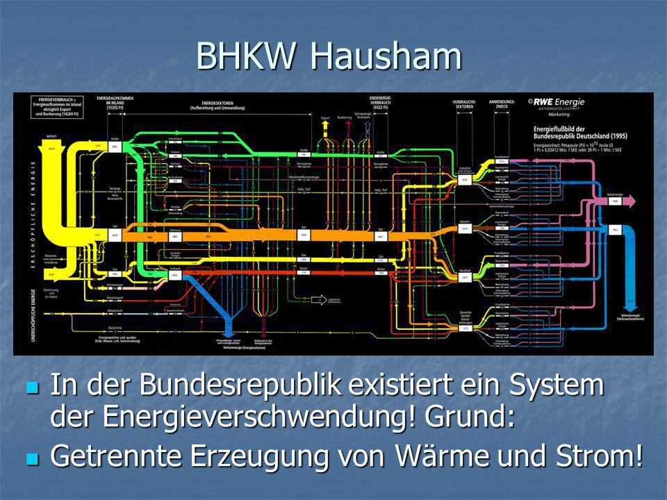 BHKW HaushamIn der Bundesrepublik existiert ein System der Energieverschwendung.