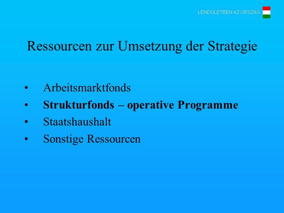 Ressourcen zur Umsetzung der Strategie