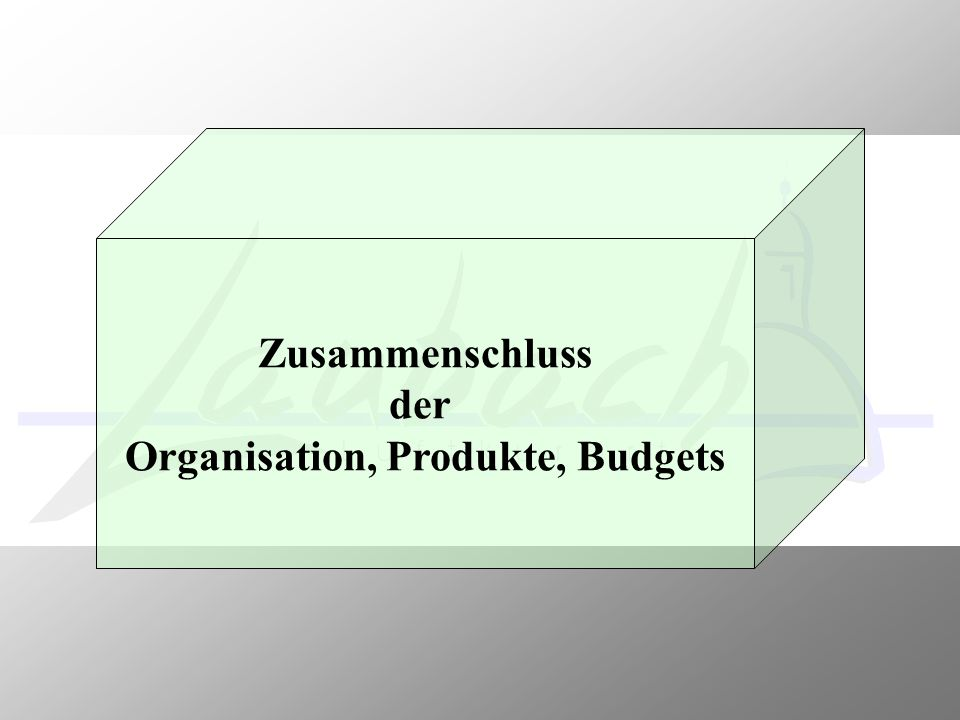 Organisation, Produkte, Budgets