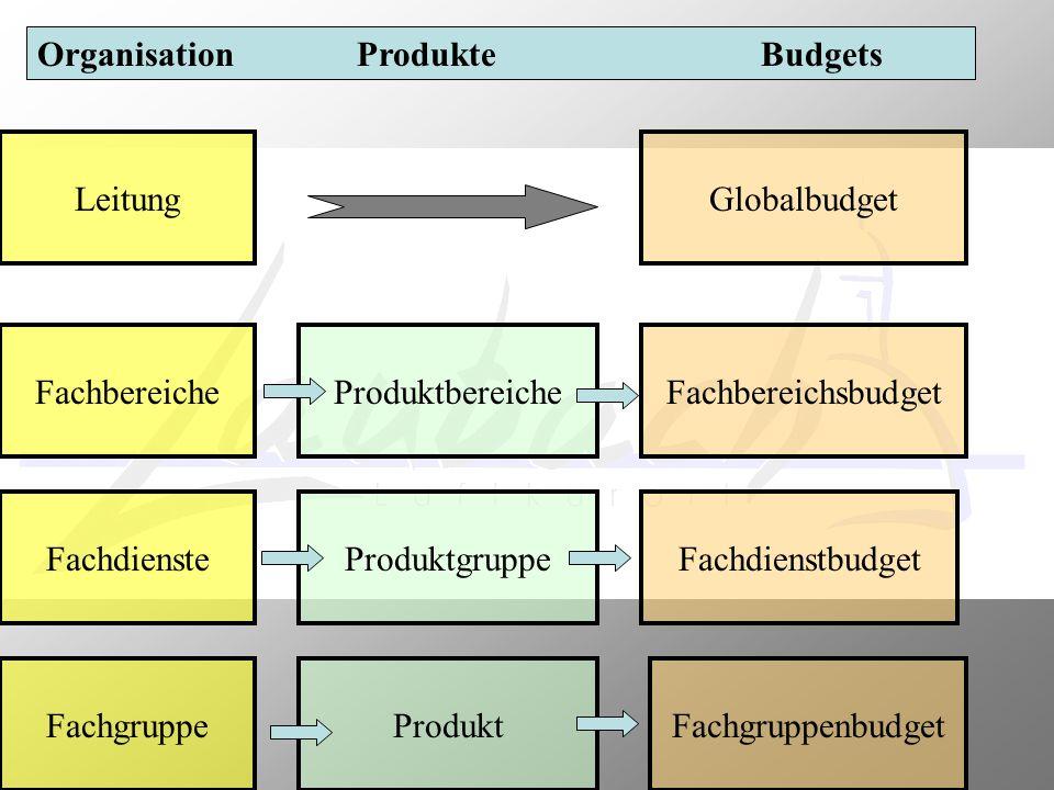 Organisation Produkte Budgets