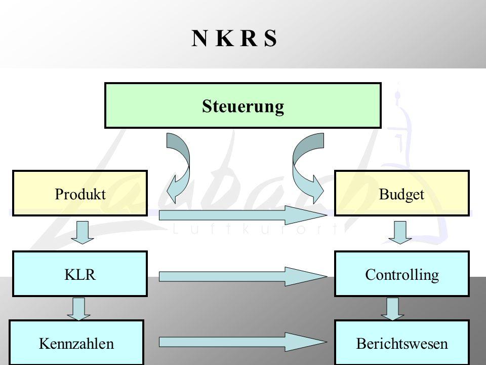 Steuerung N K R S Produkt Budget KLR Controlling Kennzahlen