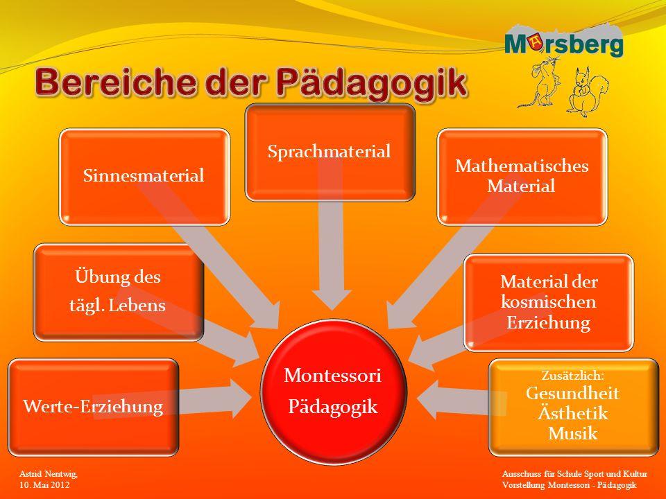 Bereiche der Pädagogik