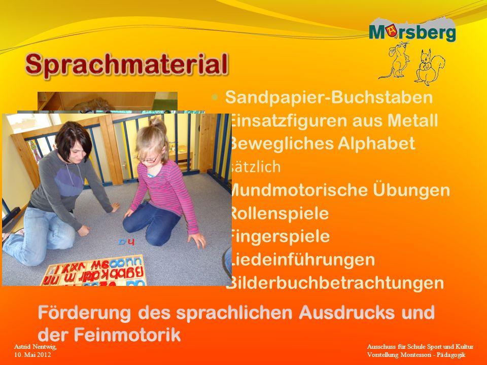 Sprachmaterial Sandpapier-Buchstaben. Einsatzfiguren aus Metall. Bewegliches Alphabet. Zusätzlich.