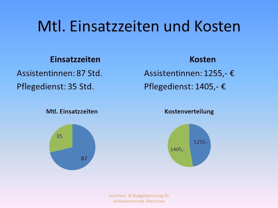 Mtl. Einsatzzeiten und Kosten