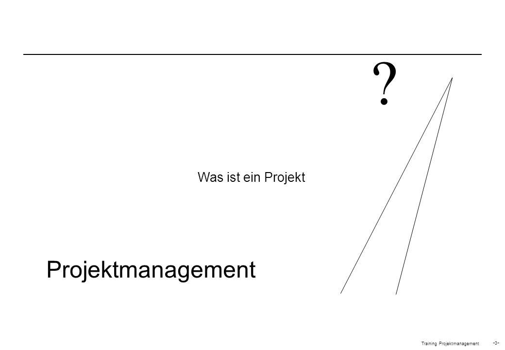 Was ist ein Projekt Projektmanagement