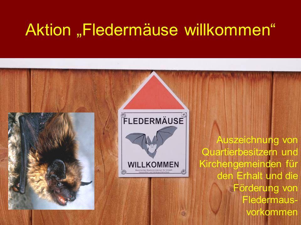 """Aktion """"Fledermäuse willkommen"""